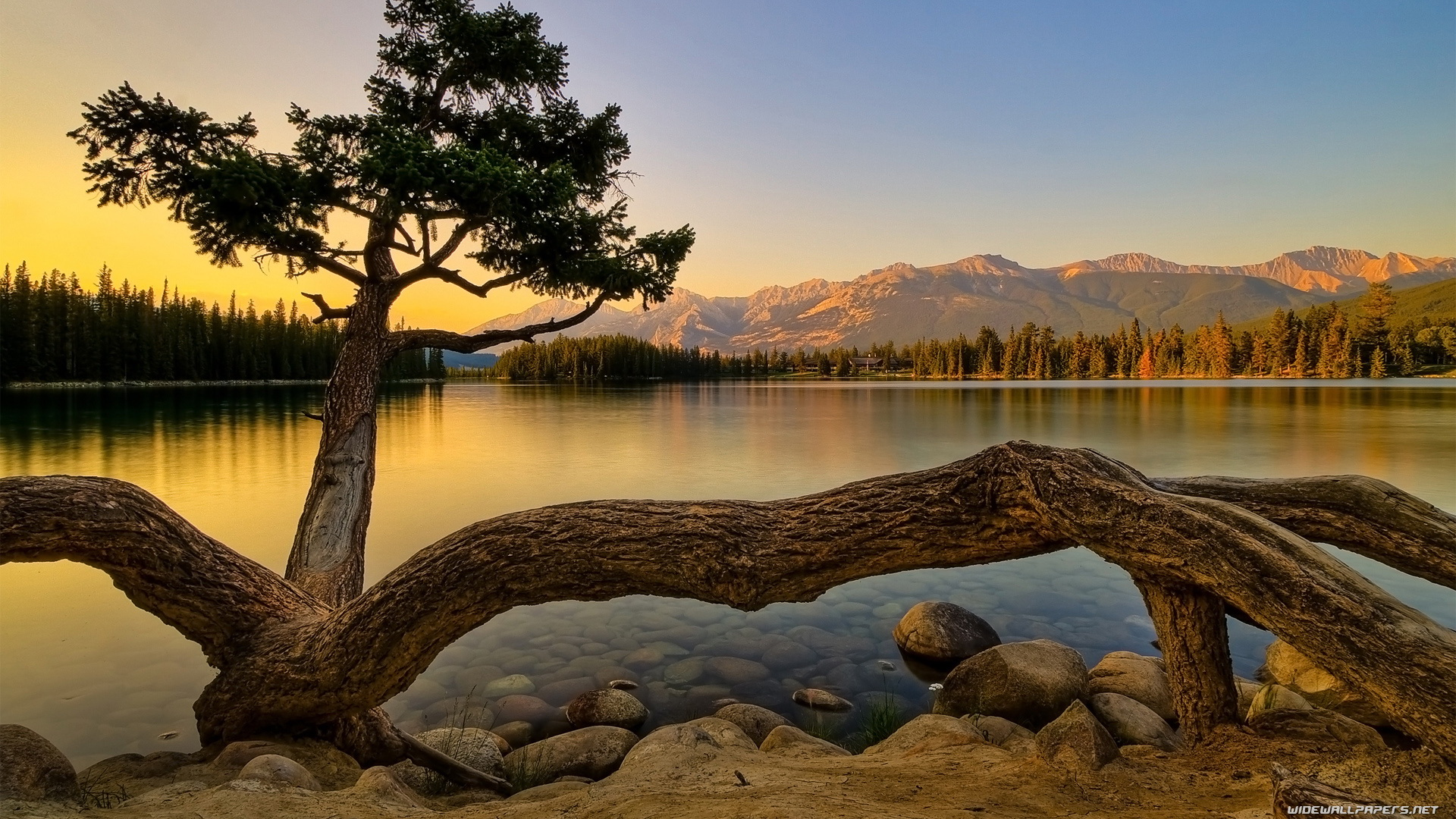 Nature desktop wallpapers HD and wide wallpapers